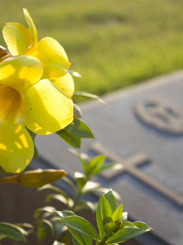 Spostamento salma cimitero padova